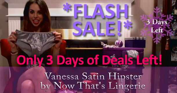 Flash Deal: Vanessa Satin Hipster by Now That's Lingerie