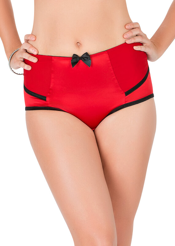 Charlotte Satin High Waisted Full Brief found on Now That's Lingerie